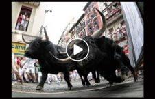 ویدیو حمله گاو زن چین 226x145 - ویدیو/ حمله وحشتناک گاو به یک زن در چین