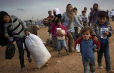 پناهنده 226x145 - اطفال پناهنده بدون همراه، چالشی بزرگ برای حکومت هسپانیا