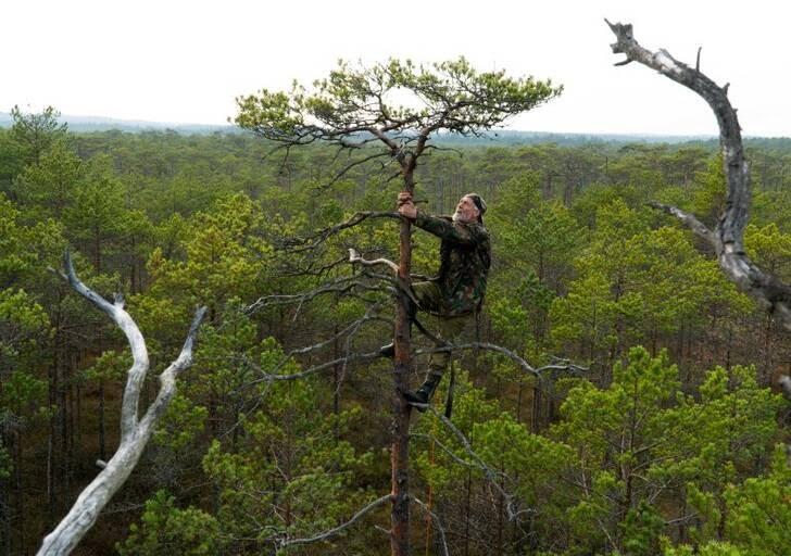 مرد72ساله - تصویر/ شاهکار پیرمرد 72 ساله در وسط جنگل