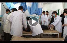 ویدیو مجروحین انفجار پوهنتون غزنی 226x145 - ویدیو/ انتقال مجروحین انفجار در پوهنتون غزنی به شفاخانه مرکزی