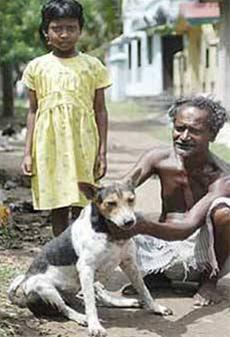 کارنامونی هاندسا - ازدواج اجباری دختر 9 ساله هندی با سگ! + عکس