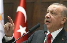 اردوغان1 226x145 - انتقاد اردوغان از سرکوب تظاهراتهای ضد دولتی در کشورهای اروپایی