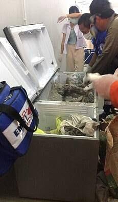 جسد زن3 - جسد تجزیه شده یک زن تاجر در یخچال + تصاویر(18+)