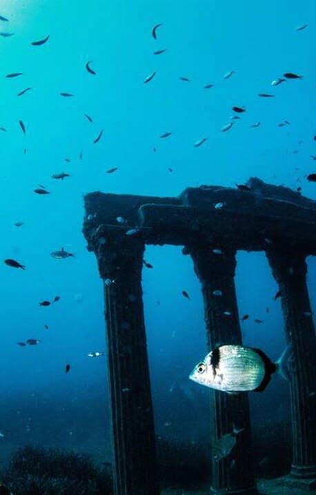 موزیم 3 - تصاویر/ موزیم در زیر آب