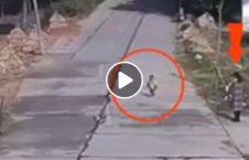ویدیو مرگ طفل چشمان مادرش 226x145 - ویدیو/ مرگ دردناک طفل خردسال در مقابل چشمان مادرش