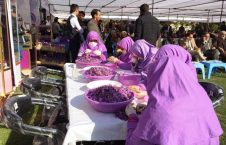 109719691 index 226x145 - پنجمین جشنواره گل زعفران در ولایت هرات
