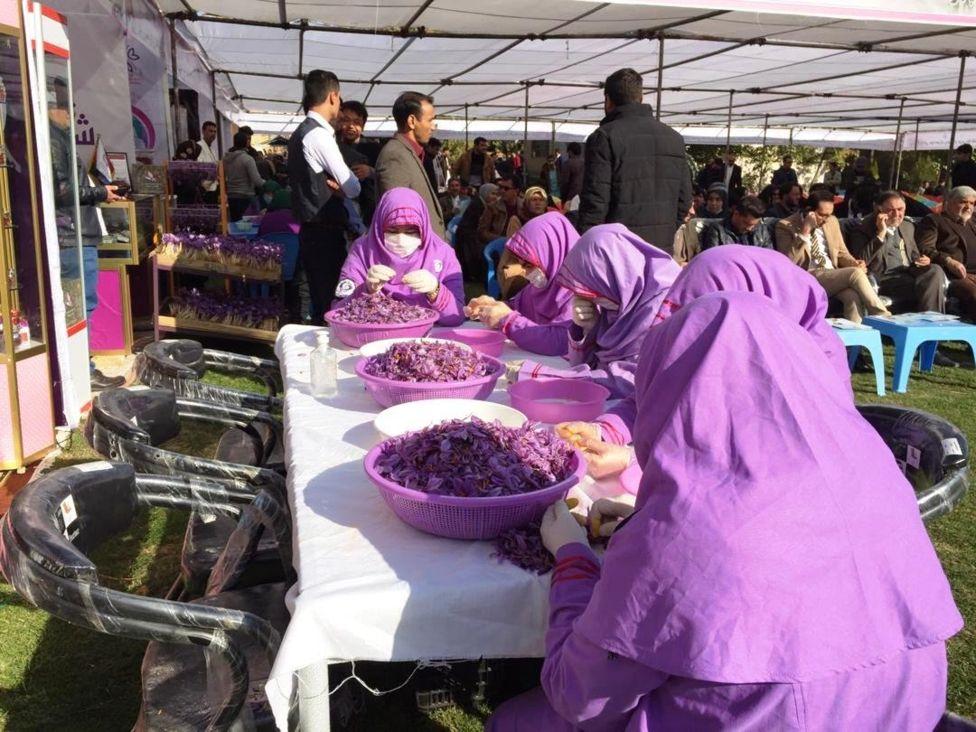 109719691 index - پنجمین جشنواره گل زعفران در ولایت هرات