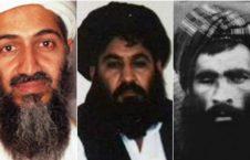 l 106499 053210 updates 226x145 - طالبان، نقش القاعده در حملات ۱۱ سپتمبر رد می کنند