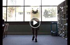 ویدیو اختراع اجسام نامریی 226x145 - ویدیو/ اختراعی که می تواند اجسام را نامریی کند