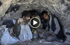 ویدیو مرگ کمین معتاد بی پناه هرات 226x145 - ویدیو/ مرگ در کمین معتادان بی پناه در ولایت هرات