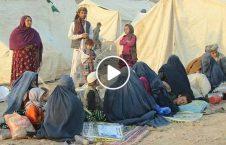 ویدیو هشدار سازمان ملل خطر افغانستان 226x145 - ویدیو/ هشدار سازمان ملل از خطری که ۱۴ ملیون شهروند افغانستان را تهدید می کند