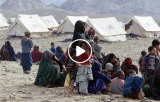 ویدیو هشدار وزارت مهاجرین بیجا داخلی 226x145 - ویدیو/ هشدار وزارت مهاجرین از وضعیت بد بیجا شده گان داخلی