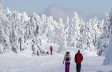 زمستان 226x145 - تصاویری زیبا از بارش برف در جهان