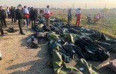 سقوط 226x145 - جان باختن تعدادی از هموطنانمان در حادثه سقوط طیاره مسافربری در ایران