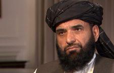 سهیل شاهین 226x145 - گفتگوی سهیل شاهین با روزنامه پاکستانی در پیوند به نهایی شدن توافق صلح با امریکا