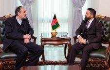 میرویس ناب بهادر امینیان 226x145 - دیدار معین همکاری های اقتصادی وزارت امور خارجه با سفیر ایران در کابل