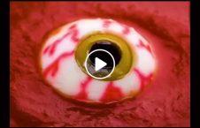 ویدیو غذا چشم انسان 226x145 - ویدیو/ طرز تهیه غذایی که به شکل چشم انسان است