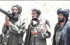 ویدیو فابریکه مواد مخدر طالبان غزنی 226x145 - ویدیو/ تخریب فابریکههای تولید مواد مخدر طالبان در غزنی