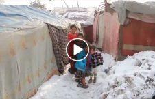 ویدیو وضعیت زنده پناهجویان کابل 226x145 - ویدیو/ وضعیت زنده گی پناهجویان در کابل