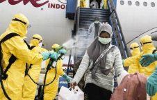 اندونزیا کرونا 2 226x145 - تصاویر/ استقبال متفاوت از مردم در میدان هوایی اندونزیا