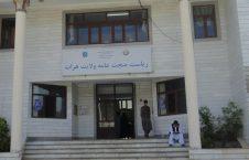 ریاست صحت عامه هرات 226x145 - اختصاص هفت و نیم ملیون افغانی برای مبارزه با کرونا در ولایت هرات