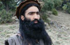 شهریار محسود 226x145 - کشته شدن یکی از رهبران ارشد طالبان پاکستانی در ولایت کنر