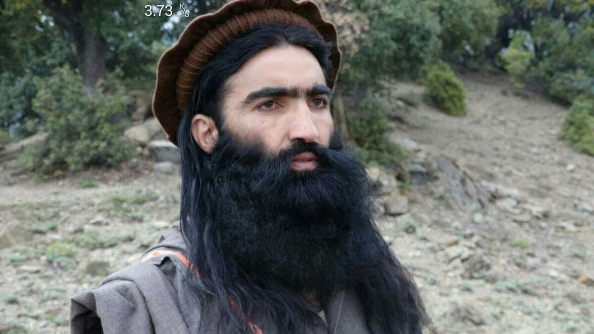 شهریار محسود - کشته شدن یکی از رهبران ارشد طالبان پاکستانی در ولایت کنر