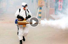 ویدیو جلوگيرى ويروس كرونا اندونزیا 226x145 - ویدیو/ جلوگيرى از شيوع ويروس كرونا در اندونزیا