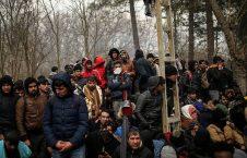 آواره یونان 226x145 - پاسخ منفی پارلمان جرمنی به درخواست پذیرش ۵۰۰۰ آواره در سرحد یونان