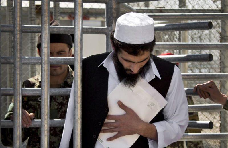 طالب زندان - جاوید فیصل: روند رهایی زندانیان طالب متوقف شده است