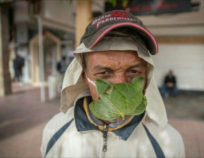 ماسک - تصویر/ عجیب ترین ماسک دنیا
