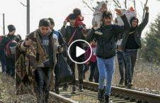 ویدیو درگیری سرحد یونان 226x145 - ویدیو/ روایتی از میان درگیریها در سرحد یونان