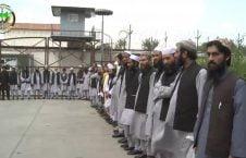 طالب 226x145 - مخالفت رییس ادارۀ مستقل ارگانهای محل افغانستان با رهایی زندانیان طالب