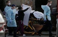 کرونا 4 226x145 - تصویر/ گور دسته جمعی قربانیان کرونا در نیویارک