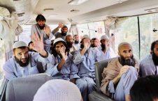 زندانیان طالبان 2 226x145 - گزارشی از بازگشت زندانیان رهاشده طالبان به میادین جنگ