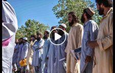 ویدیو والی دایکندی طالبان آزاد 226x145 - ویدیو/ درخواست والی دایکندی از طالبان آزاد شده