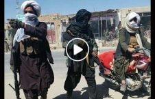 ویدیو والی هلمند گروه طالبان 226x145 - ویدیو/ سخنان والی هلمند درباره ارتباط گروه های تروریستی با طالبان