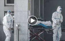 ویدیو مرگ بیماران کرونا والی هرات 226x145 - ویدیو/ آمار مرگ و میر بیماران کرونایی از زبان والی هرات