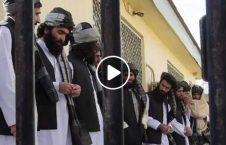 ویدیو نماز طالبان زندان 226x145 - ویدیو/ نماز آخر طالبان در زندان!