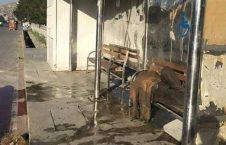 ایستگاه ملی بس2 226x145 - تصویر/ استراحت گاه معتادین مواد مخدر