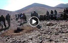 ویدیو/ سنگسار یک پیرمرد بی گناه توسط طالبان (18+)