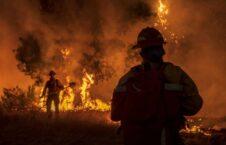 آتش سوزی کالیفورنیا 1 226x145 - تصاویر/ آتش سوزی گسترده در کالیفورنیا هزاران نفر را آواره کرد