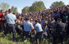 اسلوونی پناهجو 226x145 - بازداشت ۲۵۷ پناهجوی غیرقانونی در سرحدات اسلوونی