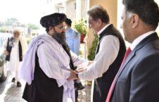 طالبان پاکستان 226x145 - درخواست 22 سناتور امریکایی برای تحریم طالبان و پاکستان