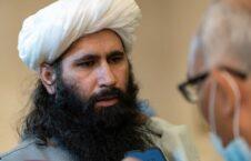 محمد نعیم 226x145 - مذاکره طالبان با خارجی ها بر سر منابع مالی افغانستان!