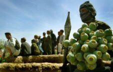 مواد مخدر 1 226x145 - درآمد سالانه ۱.۶ ملیارد دالری طالبان از قاچاق مواد مخدر و استخراج معادن