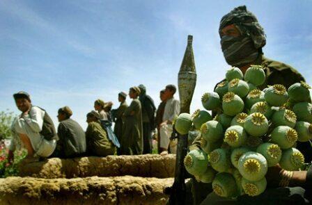 مواد مخدر 1 448x295 - نقش القاعده، داعش و طالبان در تولید و قاچاق مواد مخدر در کشور