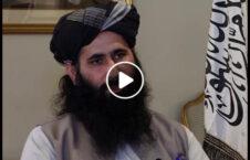 ویدیو اعتراف سخن گو هیأت مذاکره طالبان 226x145 - ویدیو/ اعترافات سخن گوی هیأت مذاکره کننده گروه طالبان