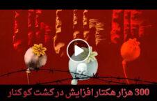 ویدیو دستاورد خارجی افغانستان 226x145 - ویدیو/ دستاورد حضور خارجی ها در افغانستان