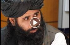 ویدیو سخنگو طالبان نشست تماس 226x145 - ویدیو/ سخنان سخنگوی دفتر سیاسی طالبان درباره نشست گروه های تماس